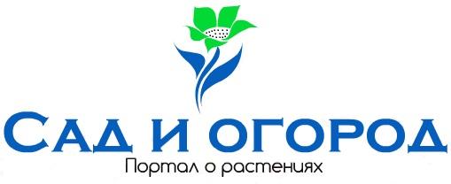 Сад и огород.ру