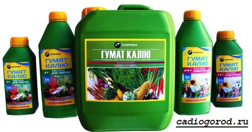 Гумат-калия-удобрение-Состав-и-применение-гумата-калия-3