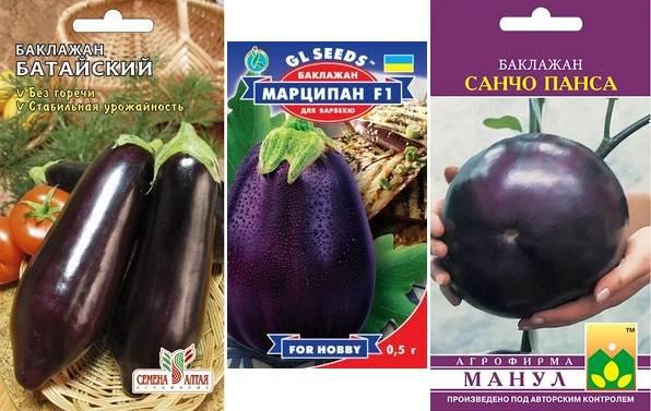 Выращивание-баклажанов-Как-и-когда-сажать-баклажаны-11