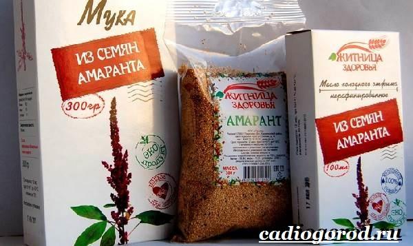 Амарант-растение-Выращивание-амаранта-Уход-за-амарантом-17