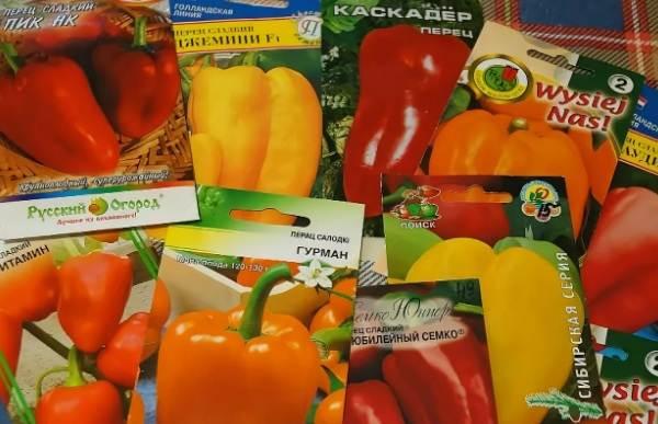 Выращивание-сладкого-перца-Как-и-когда-сажать-сладкий-перец-Уход-за-перцем-22