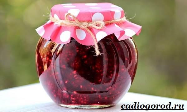 Малина-ягода-Выращивание-малины-Уход-за-малиной-30