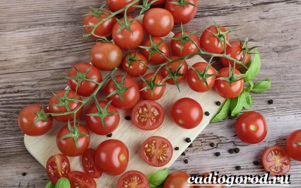 Томаты черри. Описание, особенности, выращивание и сорта томатов черри-3