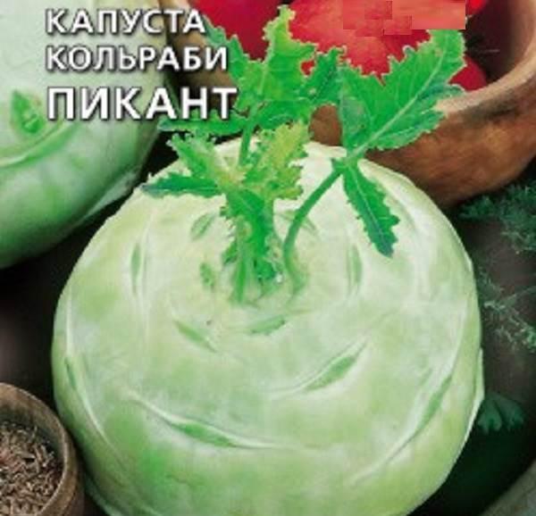 Капуста-кольраби-Описание-особенности-виды-и-выращивание-кольраби-5