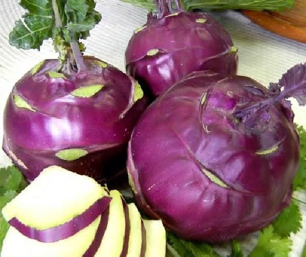 Капуста-кольраби-Описание-особенности-виды-и-выращивание-кольраби-7