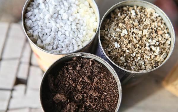 Вермикулит-для-растений-Для-чего-нужен-как-применять-и-сколько-стоит-вермикулит-9