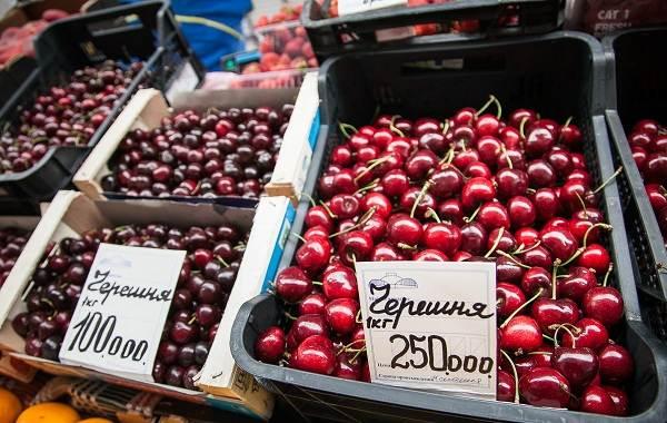 Черешня-растение-Описание-и-особенности-сорта-польза-и-вред-уход-и-выращивание-черешни-31