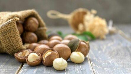 Макадамия орех из Австралии. Свойства, польза и вред, происхождение и цена макадамии