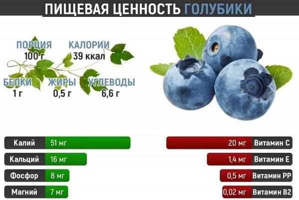 Голубика-ягода-Описание-особенности-полезные-свойства-и-выращивание-голубики-5