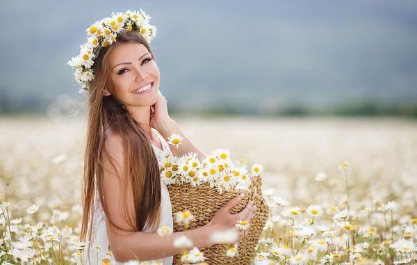 Ромашка-цветок-История-происхождение-интересные-факты-и-народные-приметы-2