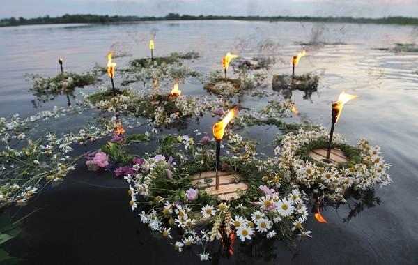 Ромашка-цветок-История-происхождение-интересные-факты-и-народные-приметы-6