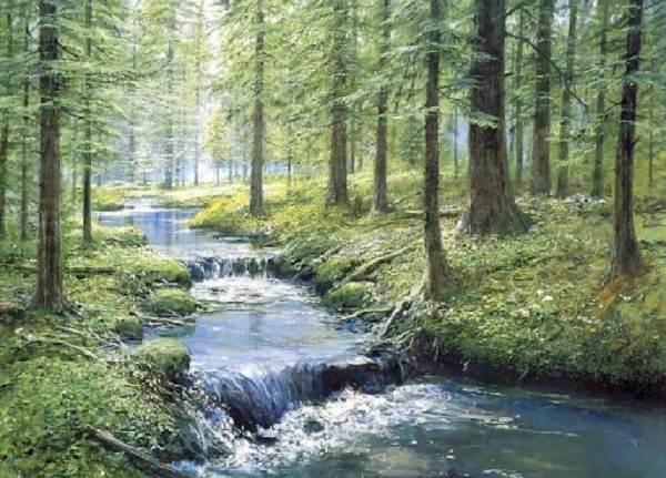 Влияние-лесов-на-природу-и-жизнь-человека-3