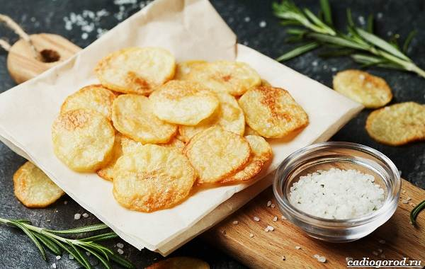 20-интересных-фактов-о-картофеле-9
