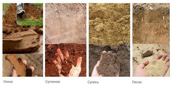 Состав-и-виды-грунта-для-растений-1