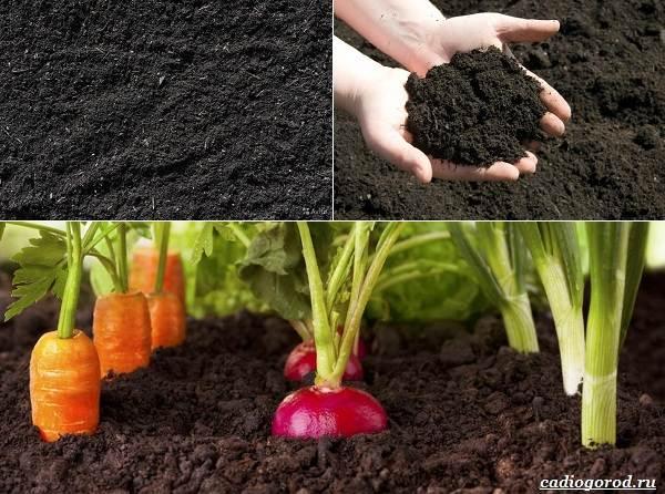 Состав-и-виды-грунта-для-растений-5