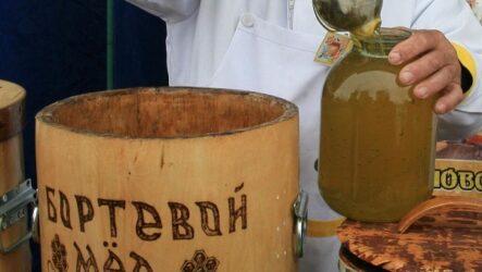Что такое бортевой мёд