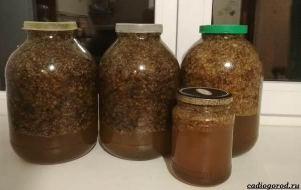 Что-такое-бортевой-мёд-3