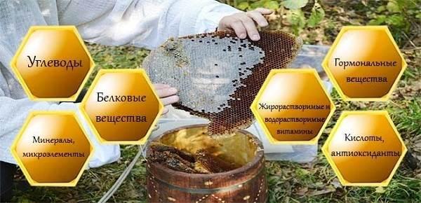 Что-такое-бортевой-мёд-9