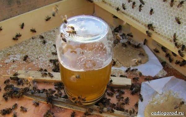 Аккураевый-мёд-изысканный-деликатес-и-лекарство-или-всего-лишь-миф-4